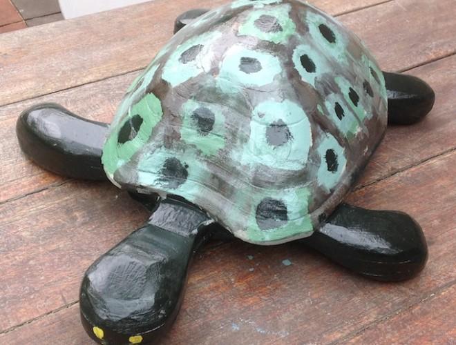 schildpad:tijn